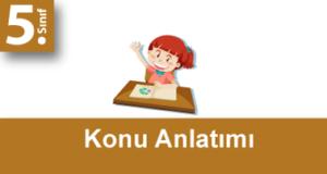 5.Sınıf Matematik Konu Anlatımı